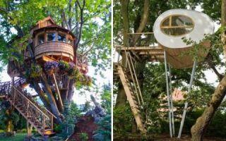 Архитектура: 10 домиков на дереве, которые не имеют ничего общего с примитивными шалашами из досок и веток