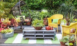 Идеи вашего дома: 20 вариантов озеленения, которые не только преобразят участок, но и вызовут массу положительных эмоций