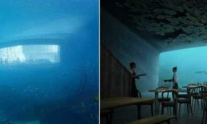 Архитектура: В Норвегии строят подводное сооружение, куда вскоре будут выстраиваться очереди желающих попасть внутрь