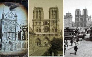 Архитектура: Как Нотр-Дам де Пари сделали складом, или 5 фактов о соборе, судьба которого часто висела на волоске