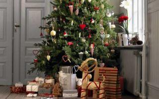 Как сделать, чтобы Новогодняя елка простояла максимально долго