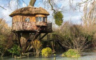 Архитектура: Удивительные дома на деревьях, глядя на которые возвращаешься в детство