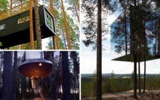 Архитектура: Гостиница на деревьях, сочетающая современный интерьер и первозданную природу