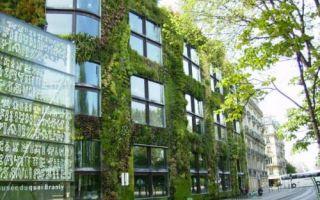 Гаджеты: Основные преимущества вертикальных садов на фасадах домов: скоро сделать также захочется каждому