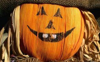 7 поделок на Хэллоуин, которые можно смастерить вместе с детьми