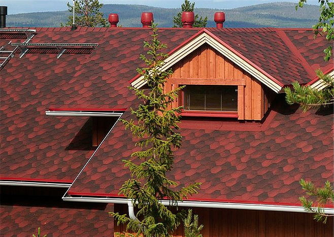 cherepitsa-Roofshield